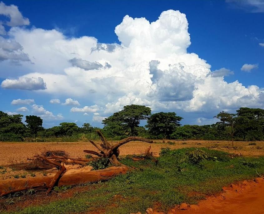 داخل وحول تنزانيا