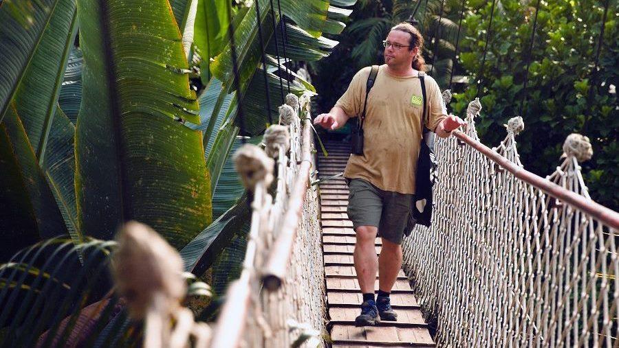 Urban Jungle Gondwanaland - Brücke